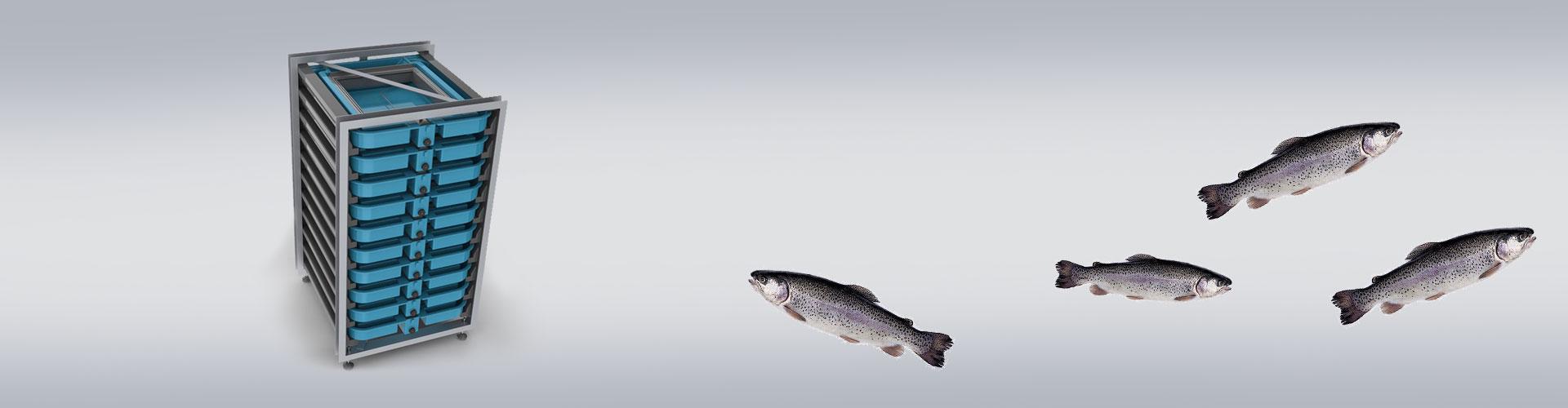 Fer Trout Incubator, Alabalık Kuluçka Dolabı